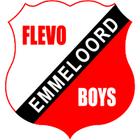 Flevo boys